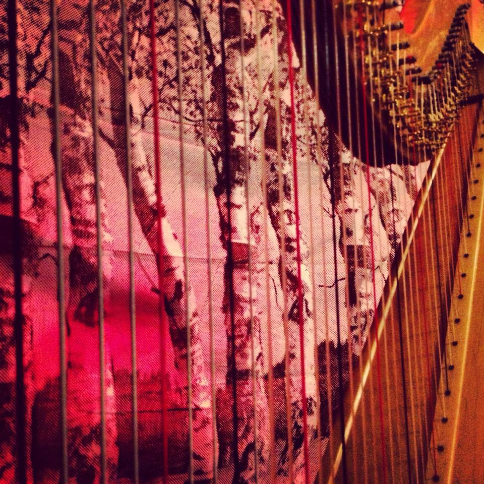cape may harp through backdrop